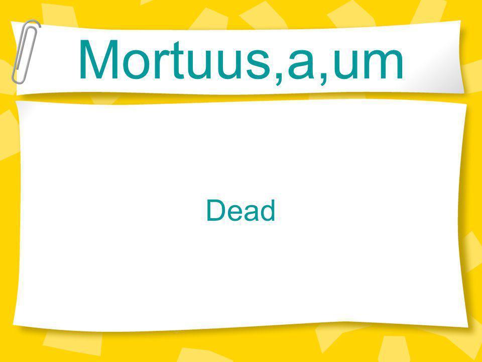 Mortuus,a,um Dead