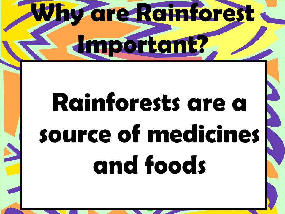 Why are Rainforest Important Rainforests are a source of medicines and foods