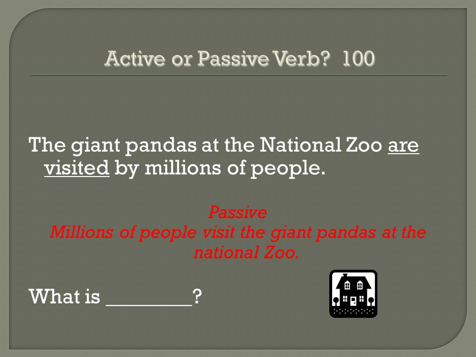 The giant pandas at the National Zoo are visited by millions of people.