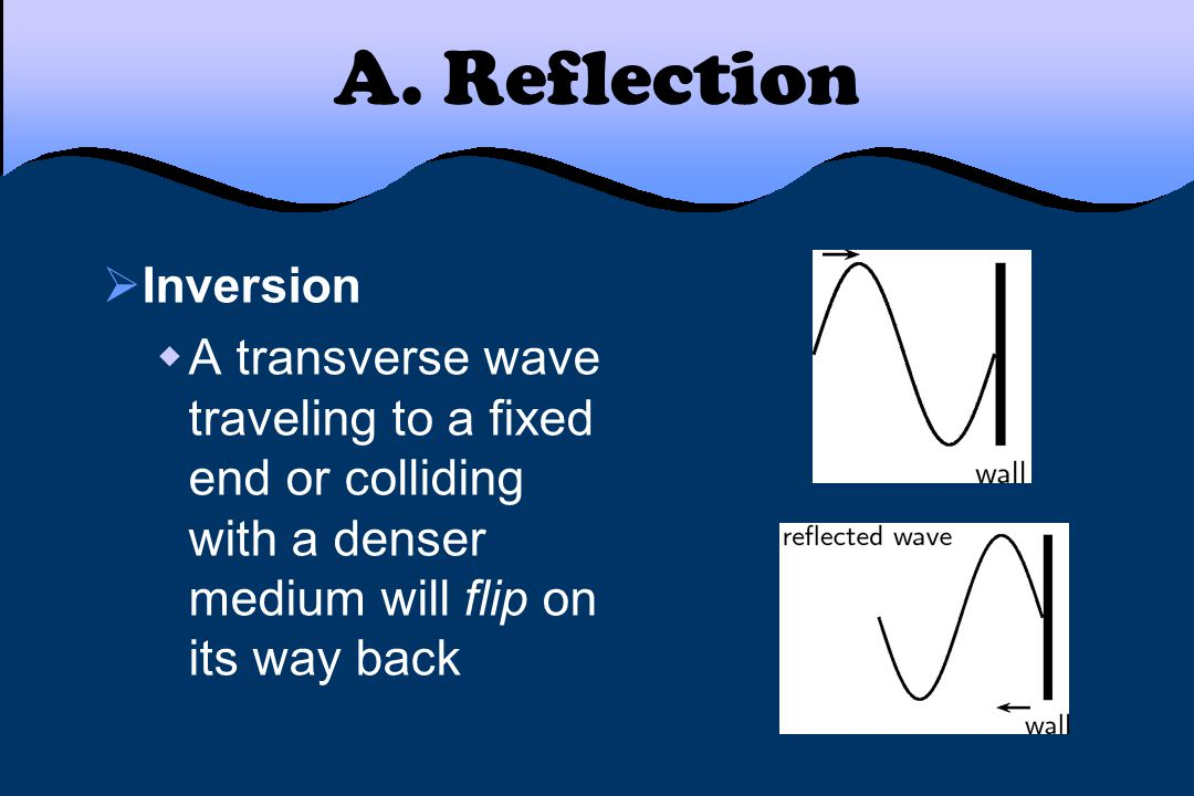 A. Reflection  Reflecting light in a mirror  A type of transverse wave