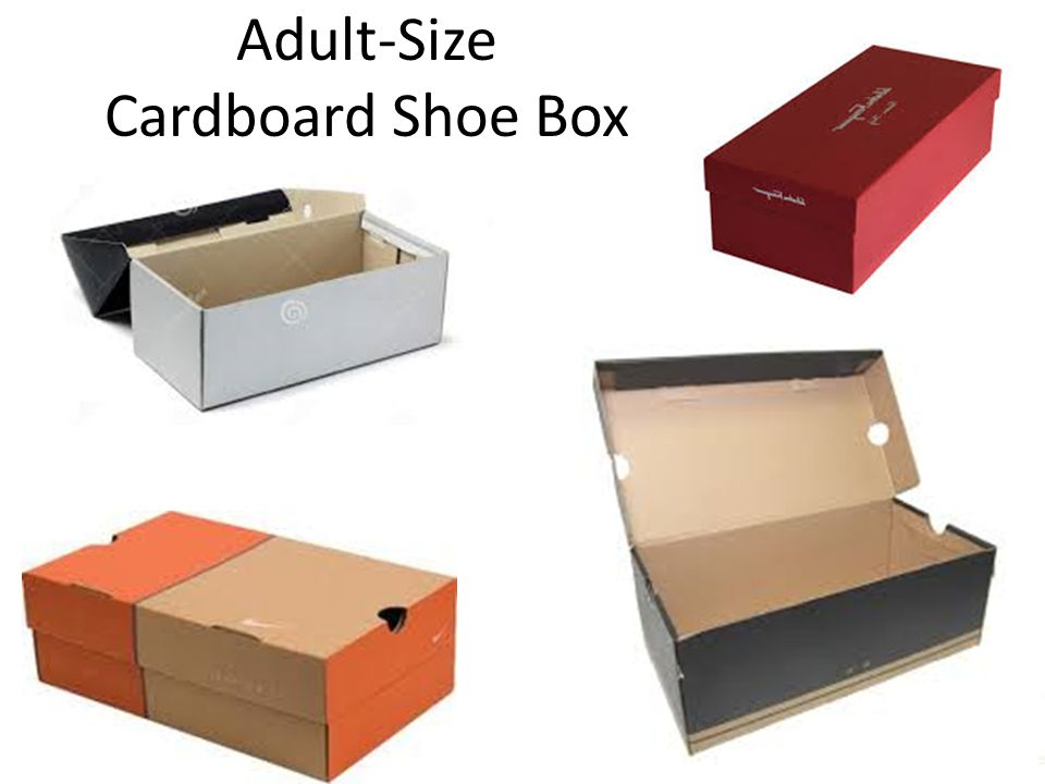 Adult-Size Cardboard Shoe Box