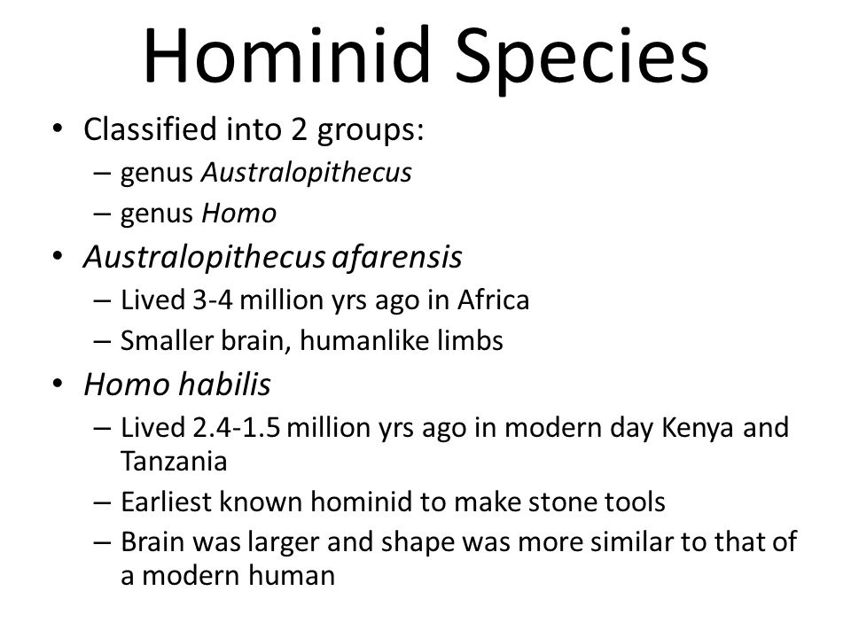 Hominid Species Classified into 2 groups: – genus Australopithecus – genus Homo Australopithecus afarensis – Lived 3-4 million yrs ago in Africa – Sma