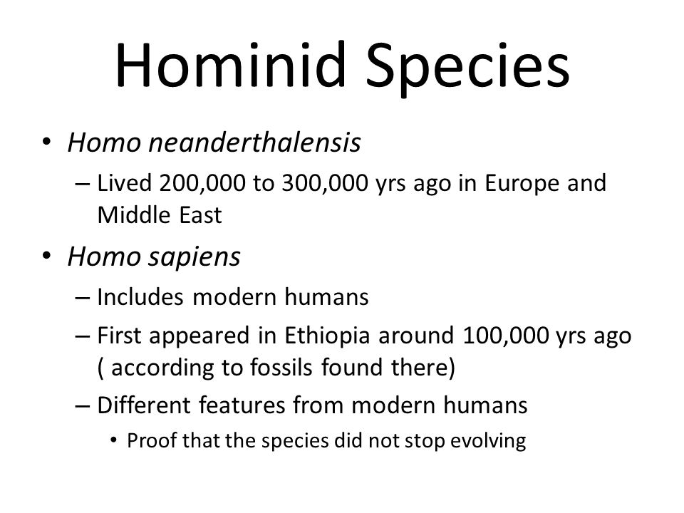 Hominid Species Homo neanderthalensis – Lived 200,000 to 300,000 yrs ago in Europe and Middle East Homo sapiens – Includes modern humans – First appea