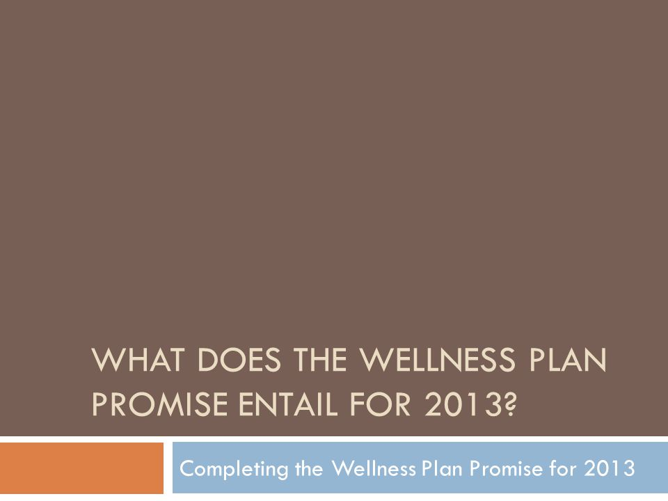 WHAT DOES THE WELLNESS PLAN PROMISE ENTAIL FOR 2013? Completing the Wellness Plan Promise for 2013