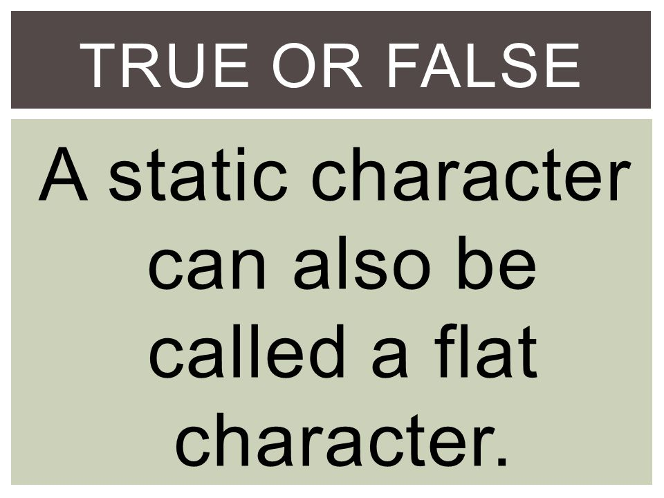 TRUE OR FALSE A static character can also be called a flat character.