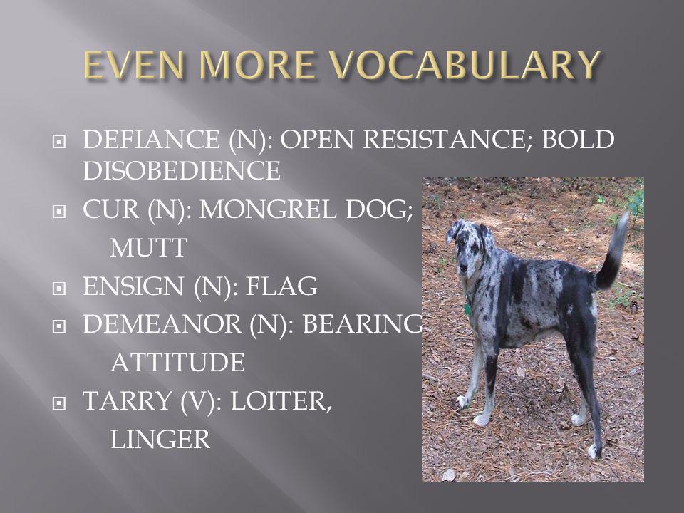  DEFIANCE (N): OPEN RESISTANCE; BOLD DISOBEDIENCE  CUR (N): MONGREL DOG; MUTT  ENSIGN (N): FLAG  DEMEANOR (N): BEARING; ATTITUDE  TARRY (V): LOITER, LINGER