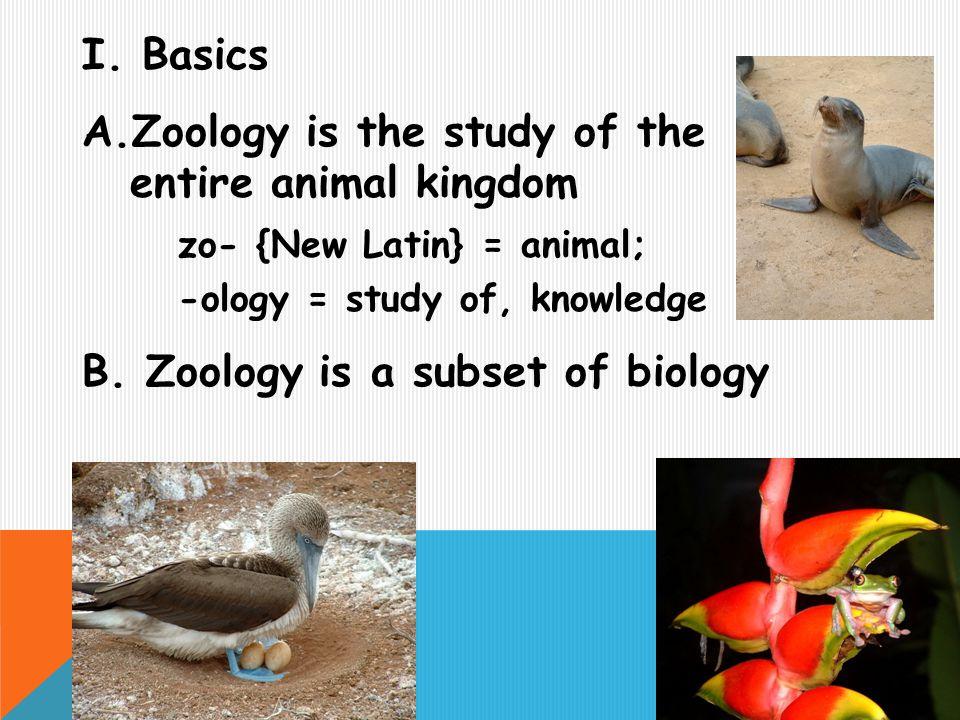Should I take Zoology or Biology?