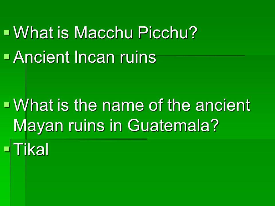  Describe Latin America's social structure.