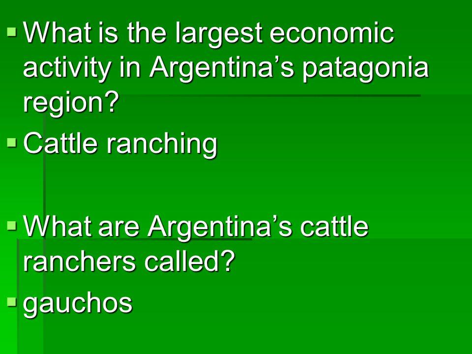  Name the major mountain range of South America.