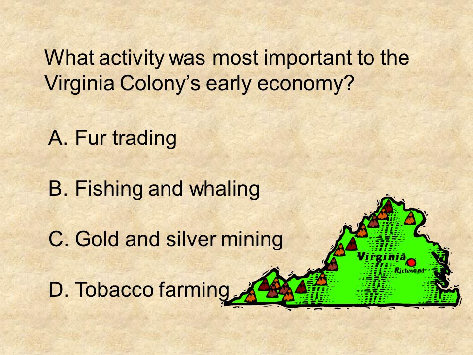 What activity was most important to the Virginia Colony's early economy? A.Fur trading B.Fishing and whaling C.Gold and silver mining D.Tobacco farmin