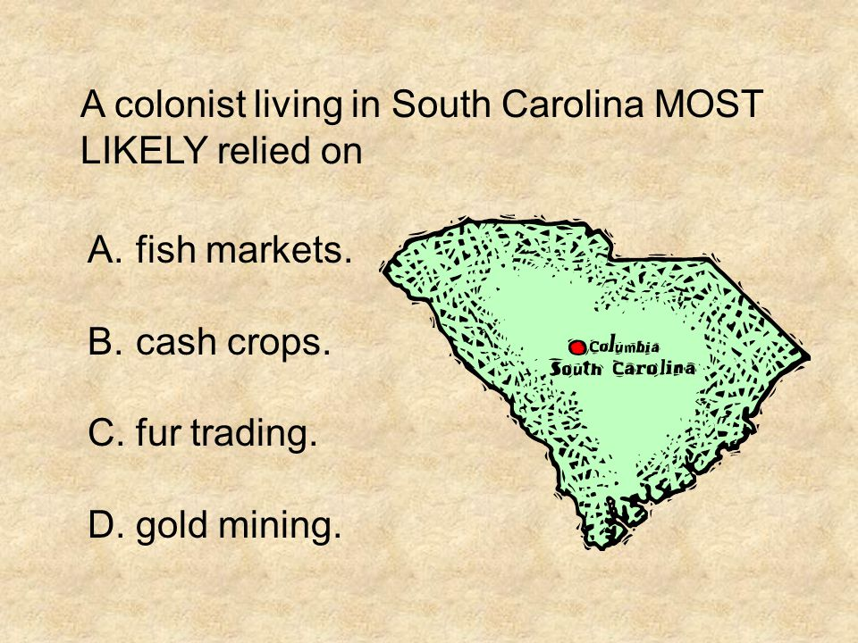 A colonist living in South Carolina MOST LIKELY relied on A.fish markets. B.cash crops. C.fur trading. D.gold mining.
