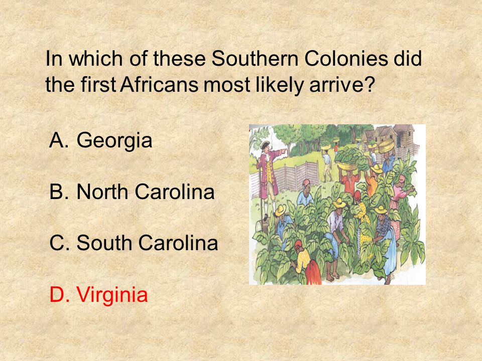 In which of these Southern Colonies did the first Africans most likely arrive? A.Georgia B.North Carolina C.South Carolina D.Virginia