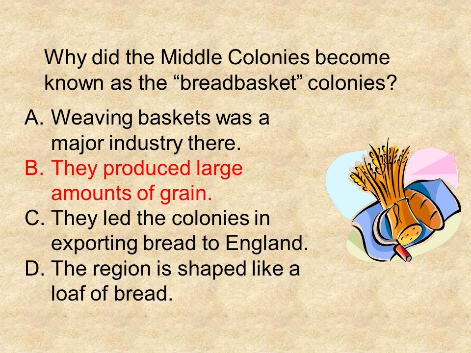 """Why did the Middle Colonies become known as the """"breadbasket"""" colonies? A.Weaving baskets was a major industry there. B.They produced large amounts of"""