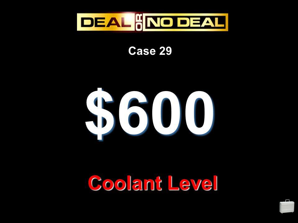 Case 29 $600 Coolant Level