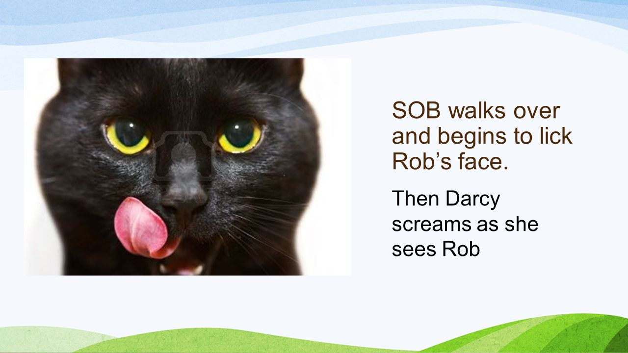 SOB walks over and begins to lick Rob's face. Then Darcy screams as she sees Rob