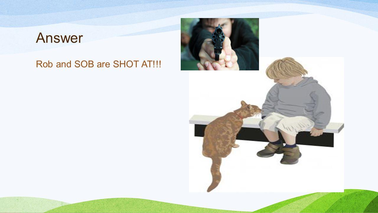 Answer Rob and SOB are SHOT AT!!!