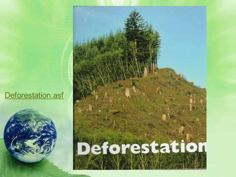 Explain the relationship between poor soil and deforestation in Sub-Saharan Africa. The Sahel is an area of Africa south of the Sahara Desert. It is a