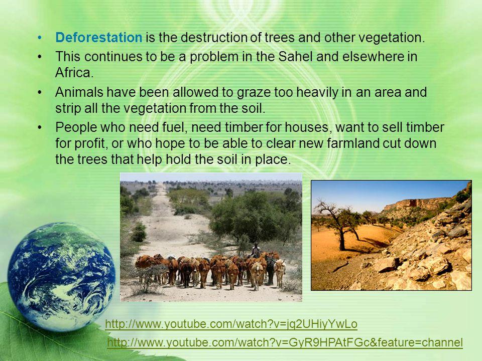Deforestation is the destruction of trees and other vegetation.