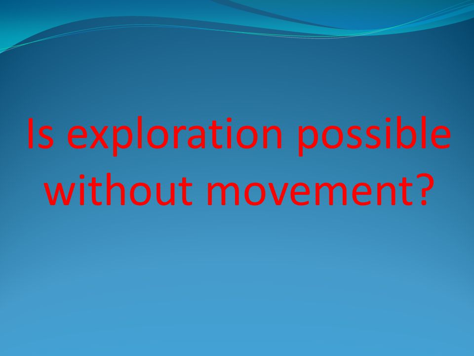 Big Ideas 1. Exploration is a form of movement. 2. Movement is an important part of the world.