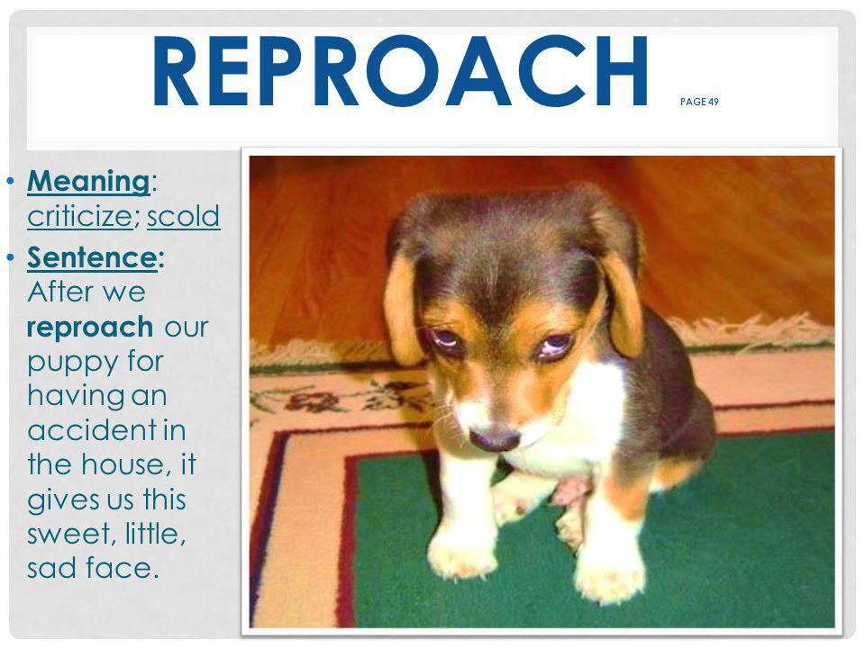 REPROACH PAGE 49 Meaning : criticize; scold Sentence: After we reproach our puppy for having an accident in the house, it gives us this sweet, little, sad face.