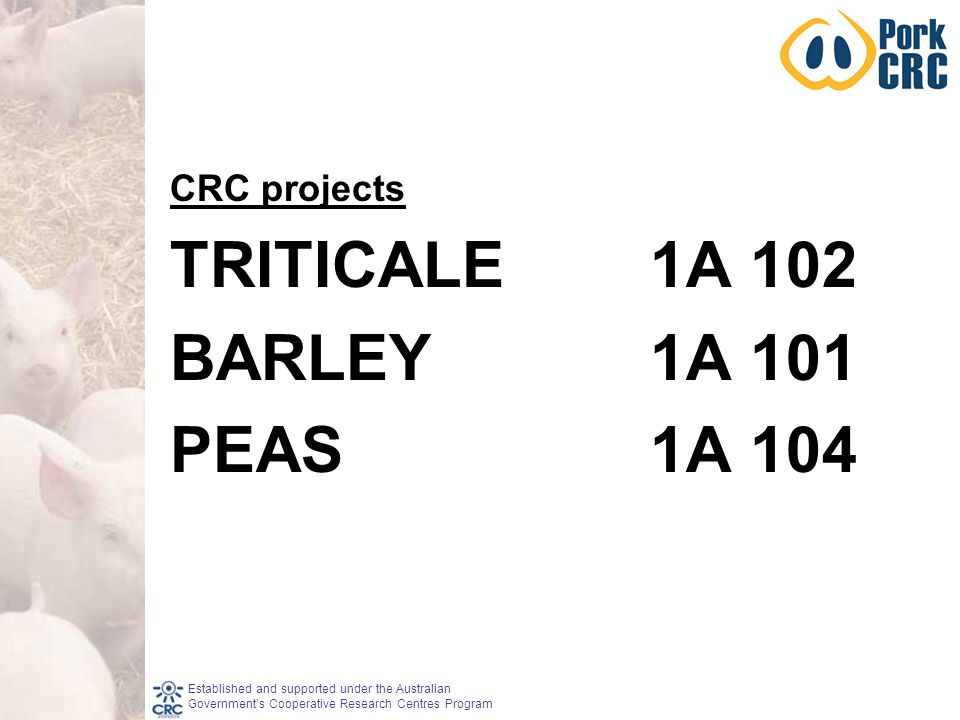 Established and supported under the Australian Government's Cooperative Research Centres Program CRC projects TRITICALE1A 102 BARLEY1A 101 PEAS1A 104