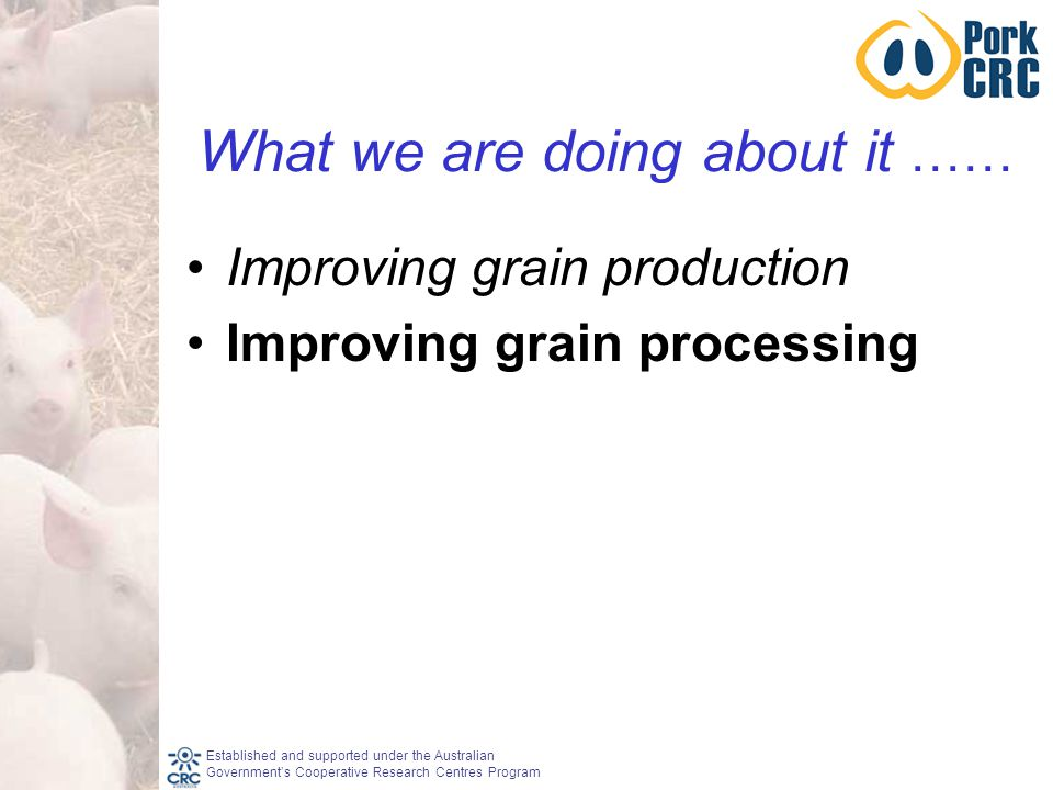 Established and supported under the Australian Government's Cooperative Research Centres Program What we are doing about it …… Improving grain production Improving grain processing
