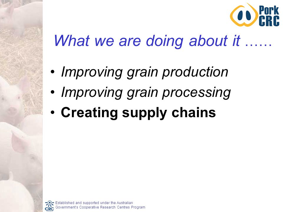 Established and supported under the Australian Government's Cooperative Research Centres Program What we are doing about it …… Improving grain production Improving grain processing Creating supply chains