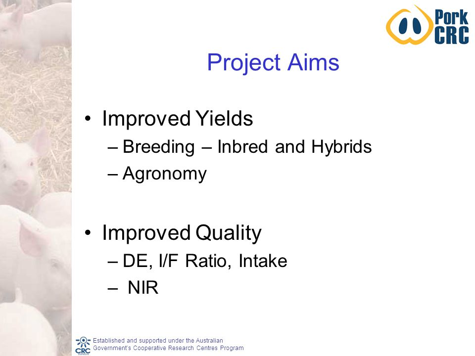 Established and supported under the Australian Government's Cooperative Research Centres Program Project Aims Improved Yields –Breeding – Inbred and Hybrids –Agronomy Improved Quality –DE, I/F Ratio, Intake – NIR