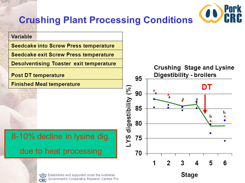 Established and supported under the Australian Government's Cooperative Research Centres Program Crushing Plant Processing Conditions Variable Seedcake into Screw Press temperature Seedcake exit Screw Press temperature Desolventising Toaster exit temperature Post DT temperature Finished Meal temperature 8-10% decline in lysine dig.