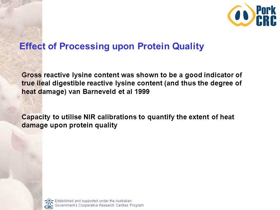 Established and supported under the Australian Government's Cooperative Research Centres Program Gross reactive lysine content was shown to be a good indicator of true ileal digestible reactive lysine content (and thus the degree of heat damage) van Barneveld et al 1999 Capacity to utilise NIR calibrations to quantify the extent of heat damage upon protein quality Effect of Processing upon Protein Quality