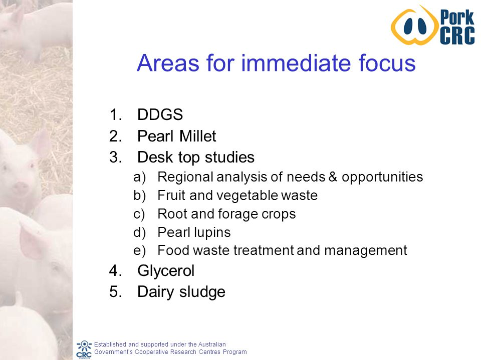 Established and supported under the Australian Government's Cooperative Research Centres Program Areas for immediate focus 1.DDGS 2.Pearl Millet 3.Desk top studies a)Regional analysis of needs & opportunities b)Fruit and vegetable waste c)Root and forage crops d)Pearl lupins e)Food waste treatment and management 4.Glycerol 5.Dairy sludge