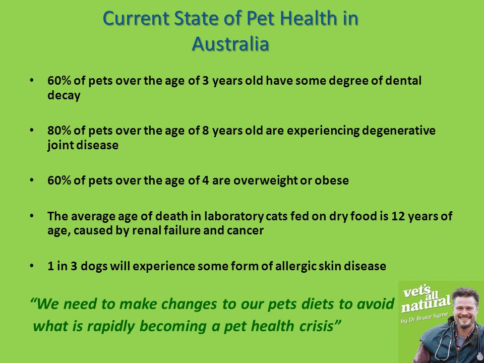 Questions 1.How long have dogs and cats been eating raw food.