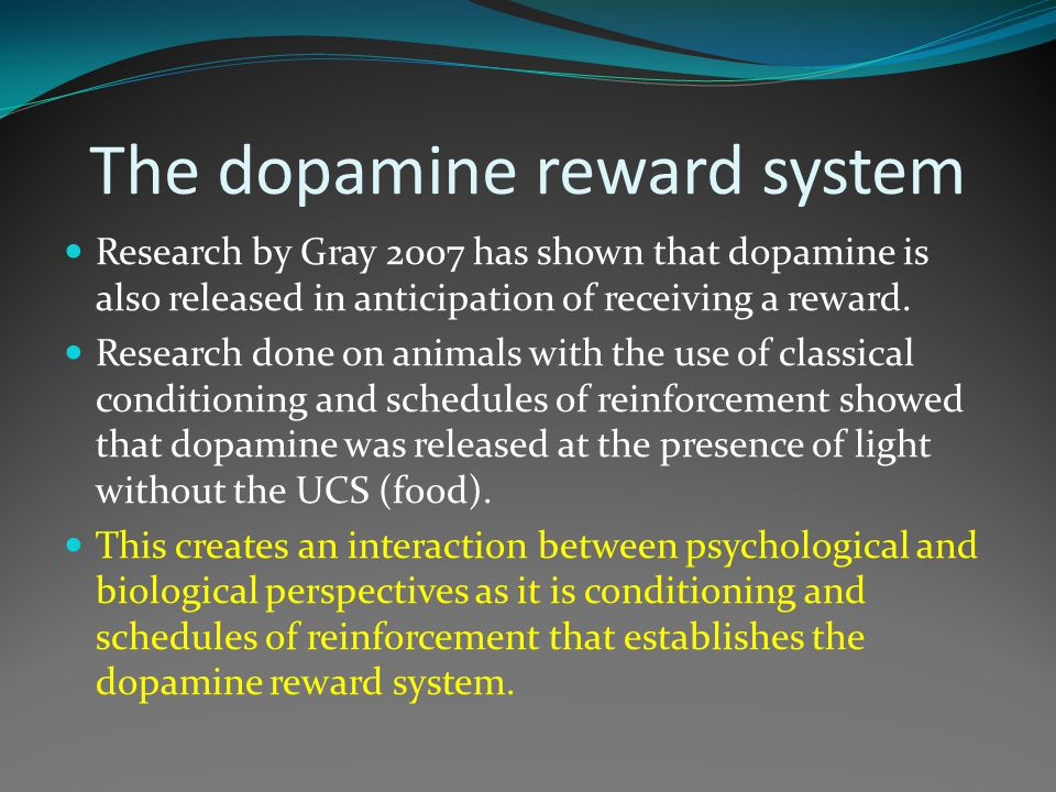 The dopamine reward system Research by Gray 2007 has shown that dopamine is also released in anticipation of receiving a reward. Research done on anim