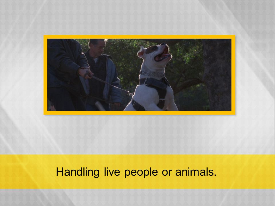 Handling live people or animals.