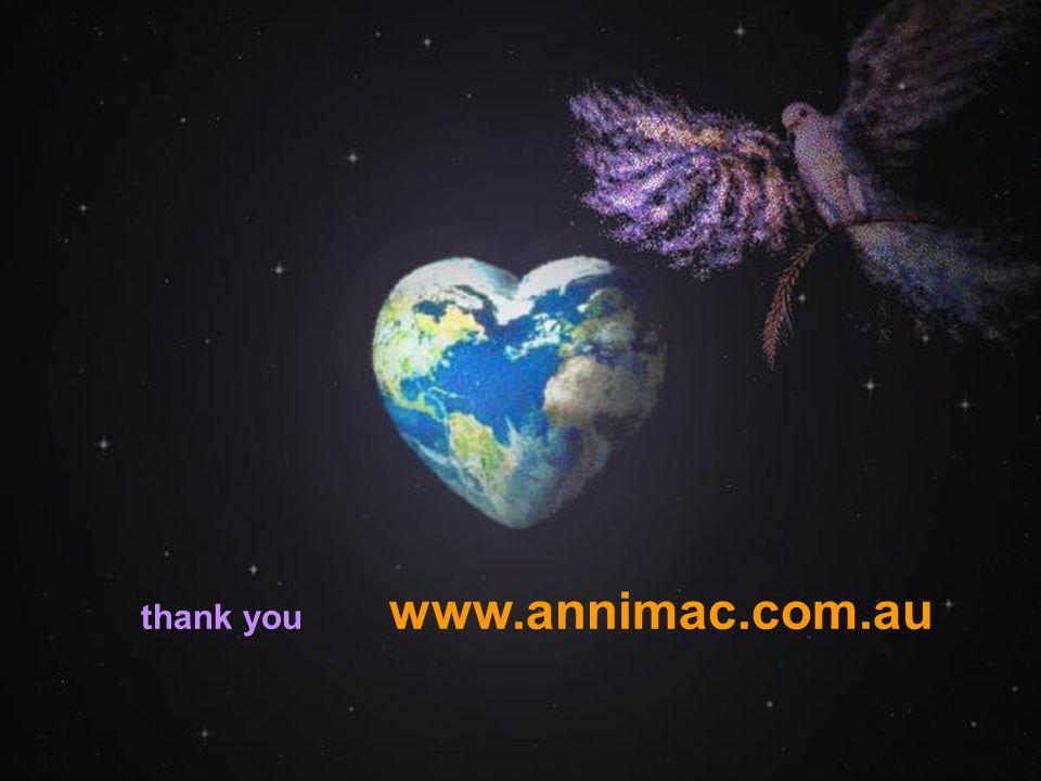 . 26 Junel 2007Annimac www.annimac.com.au28 thank you www.annimac.com.au