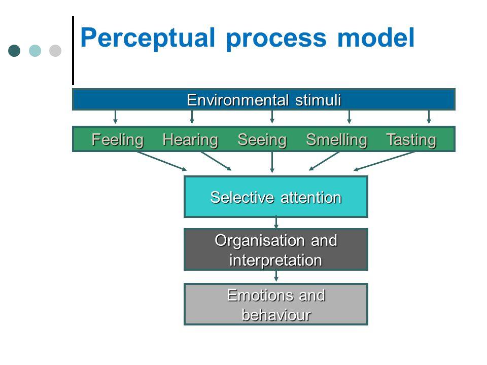 Perceptual process model Environmental stimuli Feeling Hearing Seeing Smelling Tasting