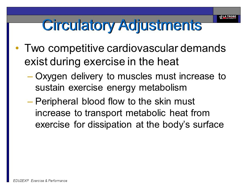 EDU2EXP Exercise & Performance Circulatory Adjustments Two competitive cardiovascular demands exist during exercise in the heat –Oxygen delivery to mu