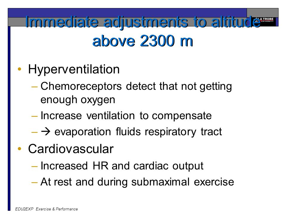 EDU2EXP Exercise & Performance Immediate adjustments to altitude above 2300 m Hyperventilation –Chemoreceptors detect that not getting enough oxygen –