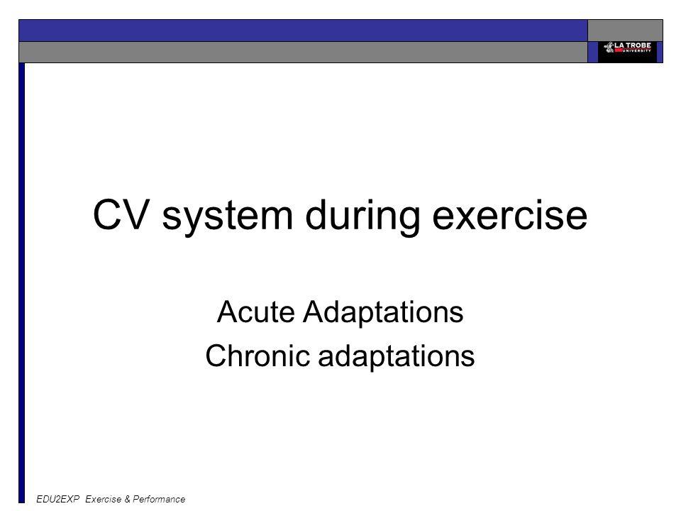 EDU2EXP Exercise & Performance CV system during exercise Acute Adaptations Chronic adaptations
