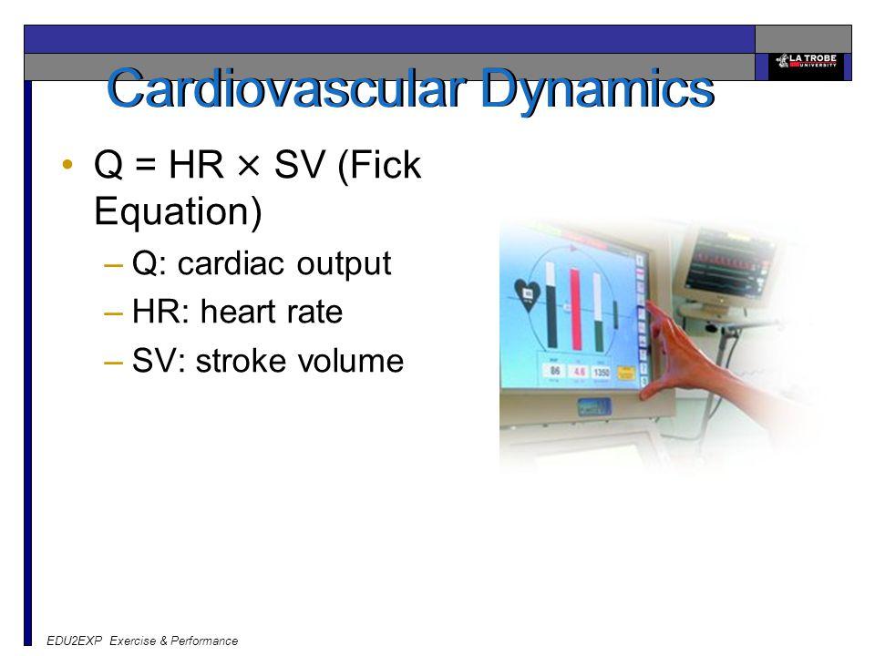 EDU2EXP Exercise & Performance Cardiovascular Dynamics Q = HR × SV (Fick Equation) –Q: cardiac output –HR: heart rate –SV: stroke volume