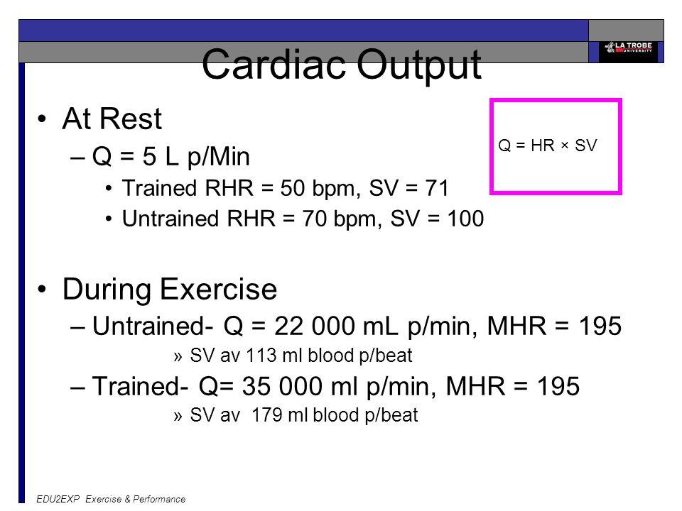 EDU2EXP Exercise & Performance Cardiac Output At Rest –Q = 5 L p/Min Trained RHR = 50 bpm, SV = 71 Untrained RHR = 70 bpm, SV = 100 During Exercise –U