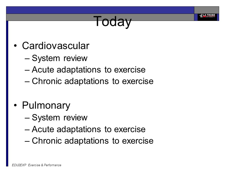 EDU2EXP Exercise & Performance Today Cardiovascular –System review –Acute adaptations to exercise –Chronic adaptations to exercise Pulmonary –System r
