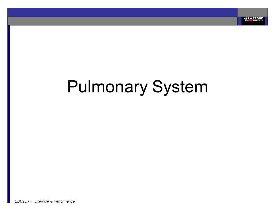 EDU2EXP Exercise & Performance Pulmonary System