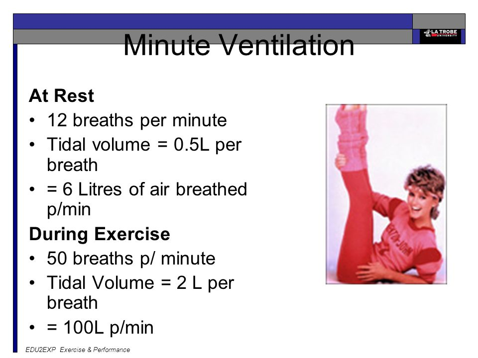 EDU2EXP Exercise & Performance Minute Ventilation At Rest 12 breaths per minute Tidal volume = 0.5L per breath = 6 Litres of air breathed p/min During