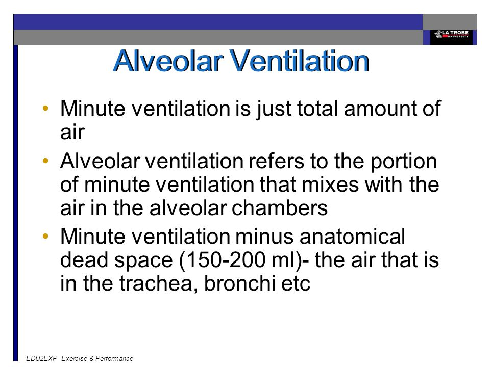 EDU2EXP Exercise & Performance Alveolar Ventilation Minute ventilation is just total amount of air Alveolar ventilation refers to the portion of minut