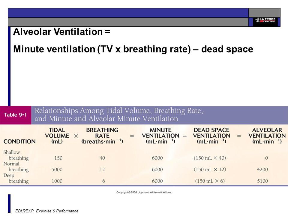 EDU2EXP Exercise & Performance Alveolar Ventilation = Minute ventilation (TV x breathing rate) – dead space