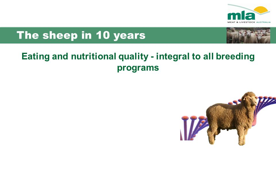 The sheep in 10 years Eating and nutritional quality - integral to all breeding programs