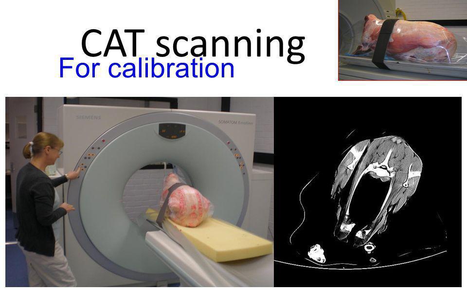CAT scanning For calibration