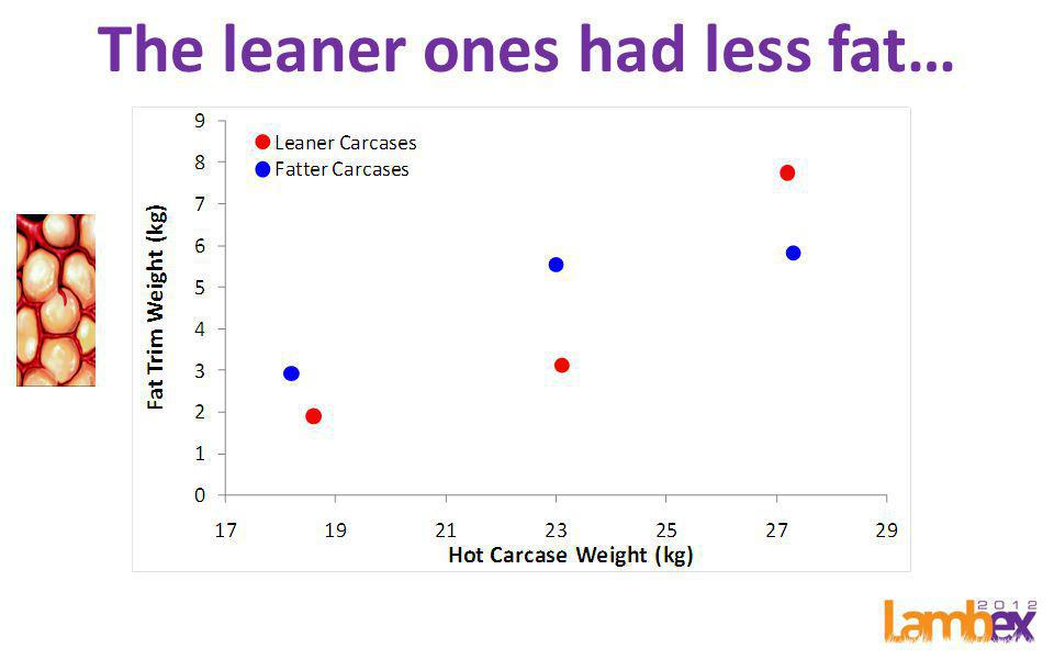 VIAscan predicts lean meat yield R 2 =0.45; RMSE=2.30