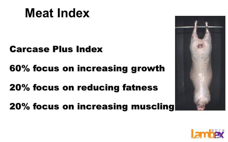 Meat Index Carcase Plus Index 60% focus on increasing growth 20% focus on reducing fatness 20% focus on increasing muscling
